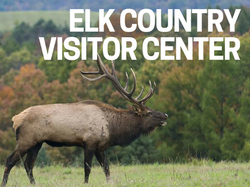 Elk Country Visitors Center