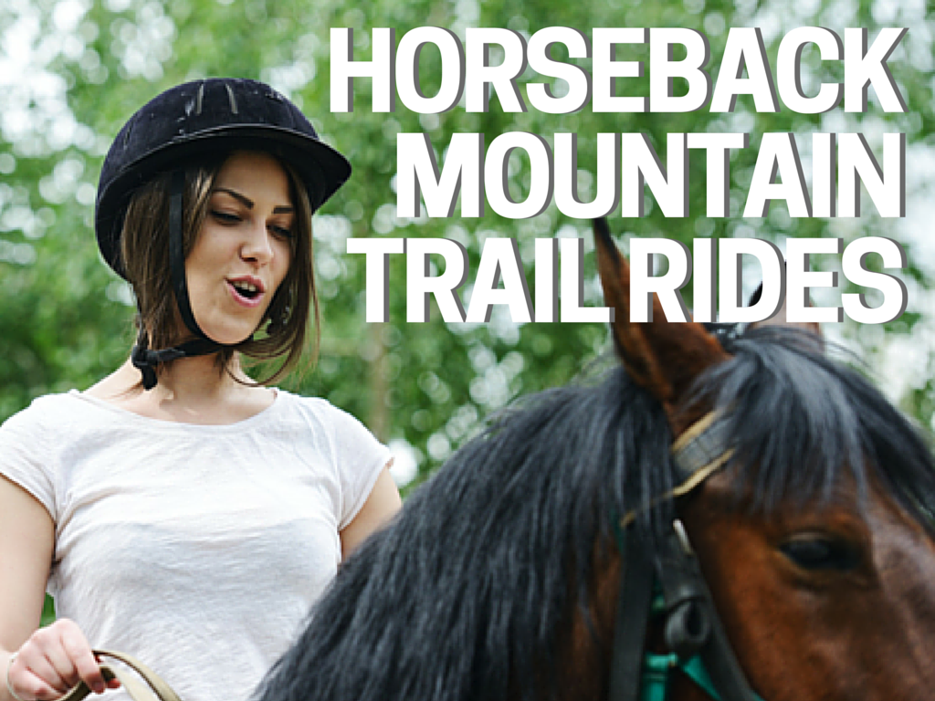 Horseback Mountain Trail Rides