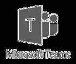 microsoft-teams-1_edited.png