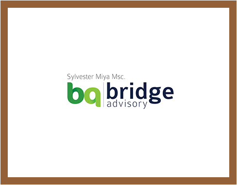 www.bridge-advisory.at