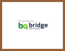 www.bridge-advisory.at