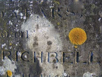 Rare lichens found in St Mary's graveyard