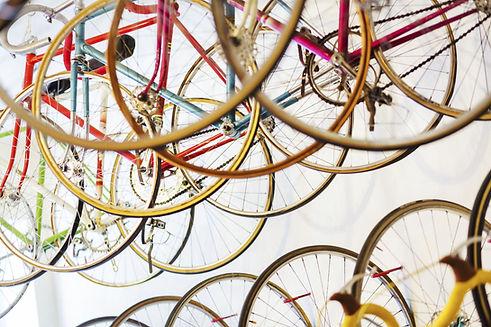 Roxbury biking