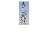 LOGO - TRANSPARENT COPY (002).png