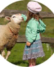 sheep_1.png