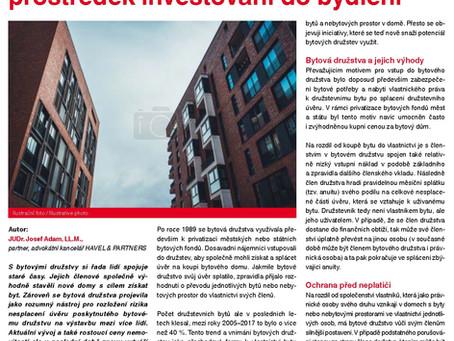 Bytová družstva jako prostředek investování do bydlení