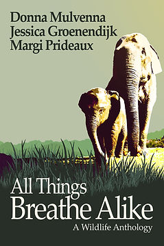 All Things Breathe Alike: A Wildlife Anthology | Jessica Groenendijk | Words from the Wild