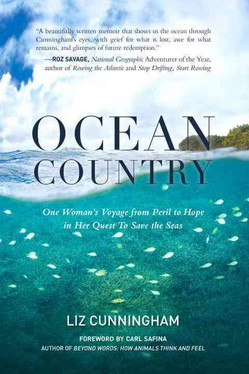 Ocean Country: A Review