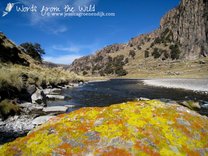 The Andes of Peru: Tres Canones. Photo: Jessica Groenendijk