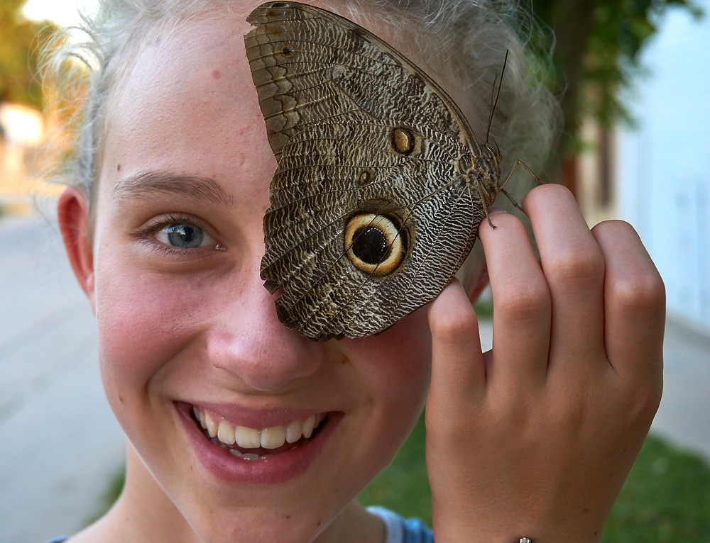 Morpho butterfly eyespot. Photo: Jessica Groenendijk, Words from the Wild