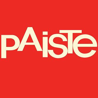 Chris Allan Paiste logo - Chris Allan Session Drummer