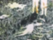 Garden-of-eden-1.jpg