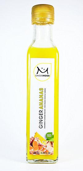 Ginger-Ananas 250 ml (6)