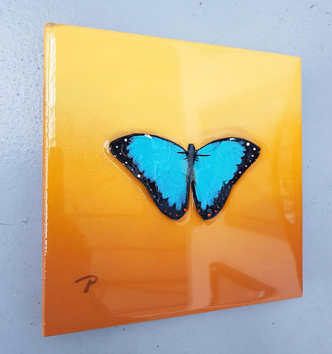 "Blue on yellow butterfly 7""×7"""