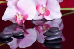 Thai Massage Hot Stones