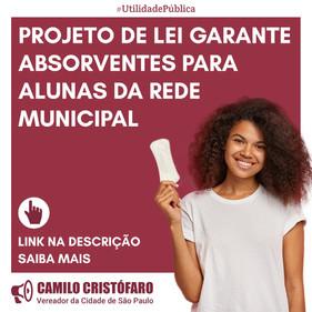 Distribuição de absorventes às alunas da rede municipal agora é Lei em São Paulo
