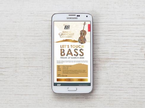 Bass1_1.jpg