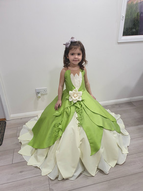 Princess & the Frog Disney outfit