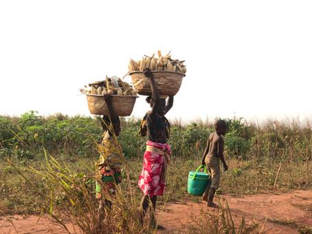 El COVID-19 aumenta el riesgo de trabajo infantil en Benin.