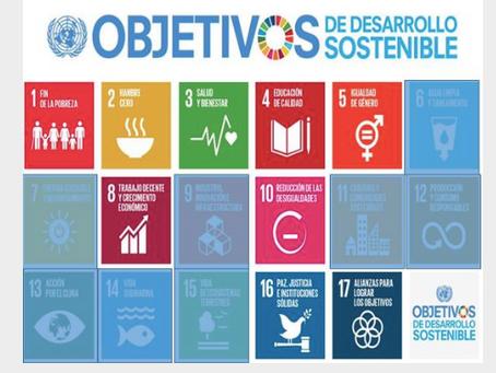 Los fundamentos del acogimiento familiar y los ODS