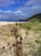 Blueys Beach, Seawardz Accomodation Pacific Palms