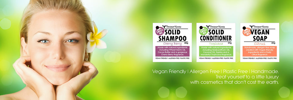 vegan-solid-shampoo-banner-3.jpg