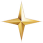 single star transparent.png