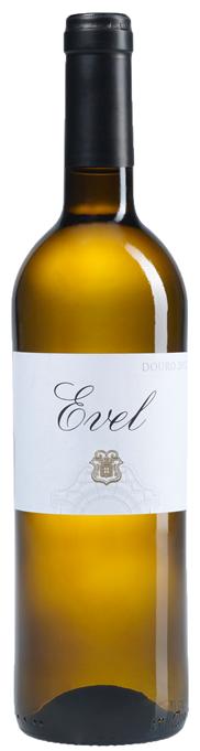 Evel White 2019 - DOC DOURO