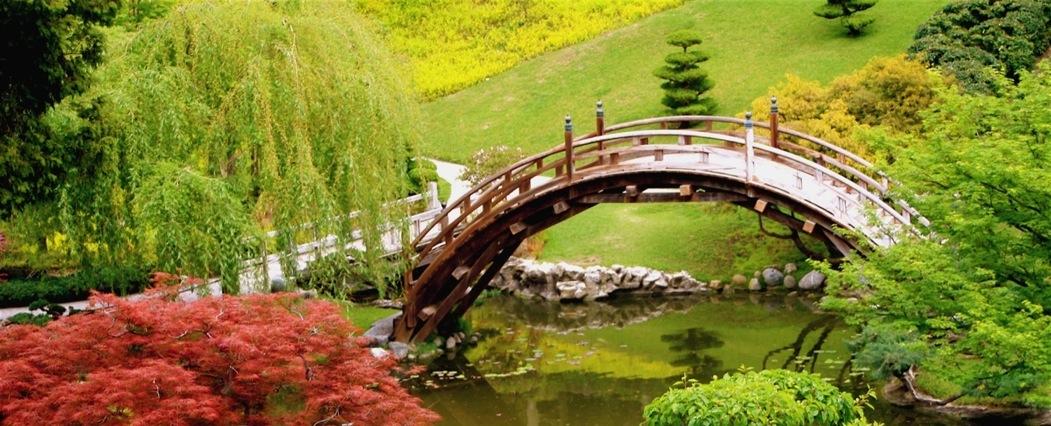 Pont japonais_edited