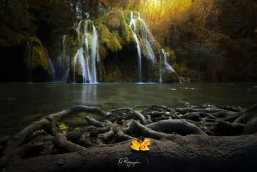 Cascade des Tufs ( Arbois )
