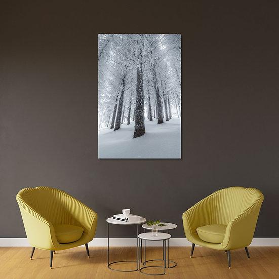 Tirage Forêt Hiver