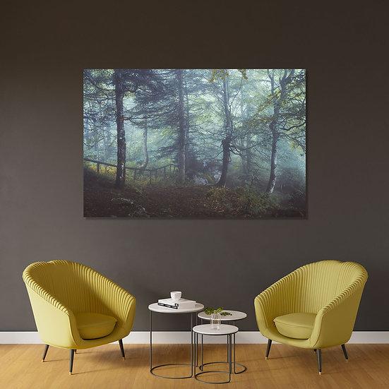 Tirage Forêt