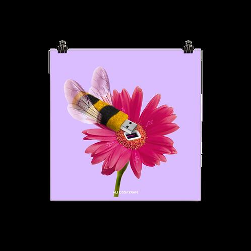 US(BEE)