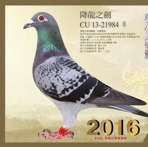 CU 13 21984 CH HEN