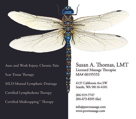 Dragonfly design-page-0 (1).jpg