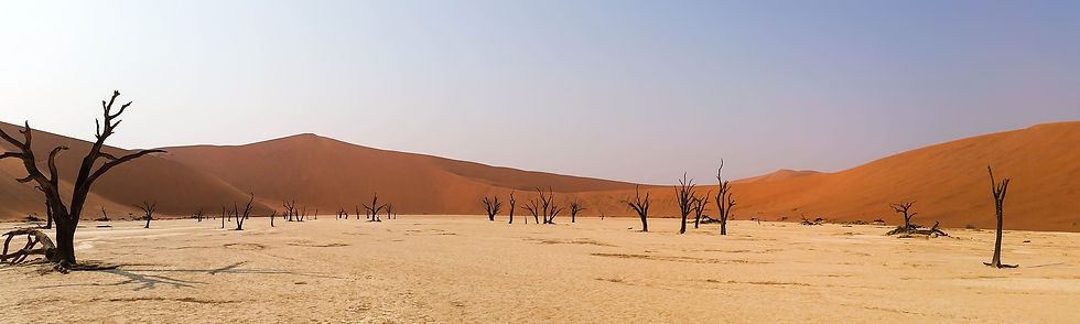 africa-1170029_1920.jpg