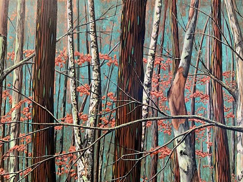 """""""In The Woods"""" by Tim Spillane"""