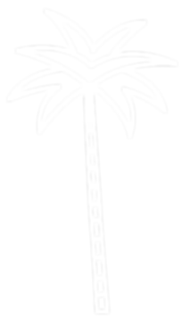 palm%20tree%20flip_edited.png