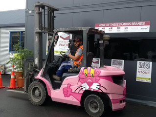 Introducing... The Pink Panther!!!!