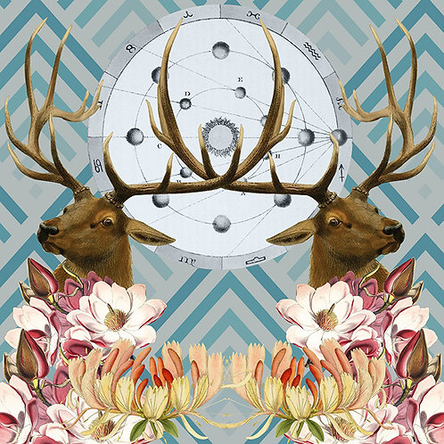 Blue Elk Scarf