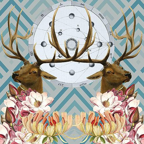 Elk Blue