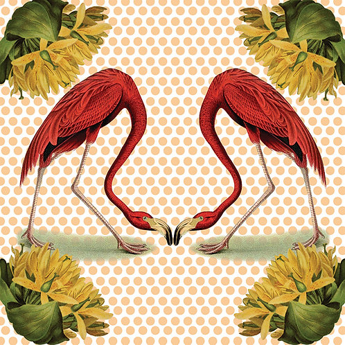 Flamingos - (Out of stock)