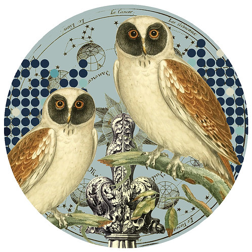 Owls - Sold as individual coaster.