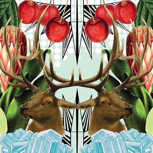 Elk & Cherries