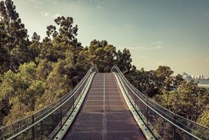 Kings Glass Bridge.jpg