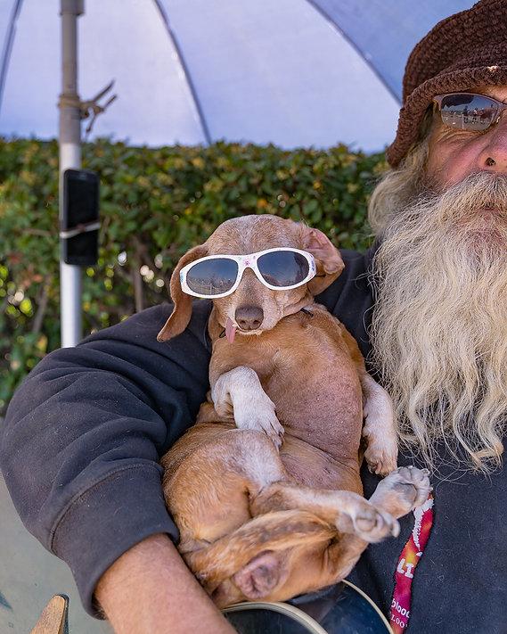 funny puppy. Pet Dog photography. Portrait photo. photography. Sevs Pics. Perth Photographer