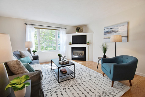 Interior Design Home Staging Living Room