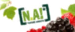 eretic, na, natureaddicts, solinest, 100%fruit