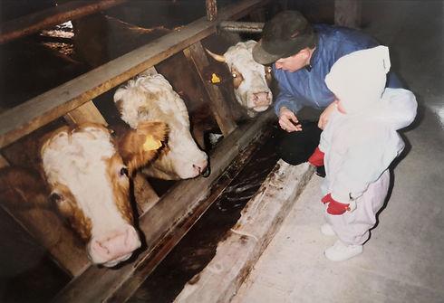 Lahisten Kartano_1992_navetta.jpg