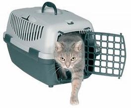 переноска кота, переноска кошки, купить переноску, переноска дешево, переноска купить беговая